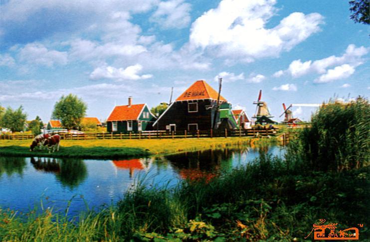 荷兰田园风光
